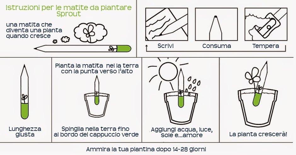 La matita piantabile sprout - Istruzioni per l'uso