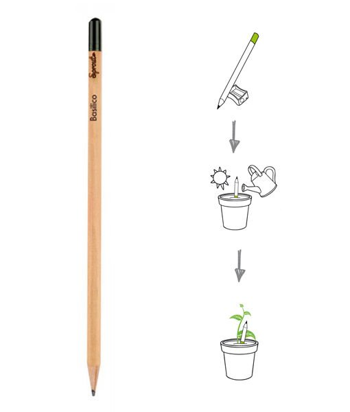Matita piantabile sprout