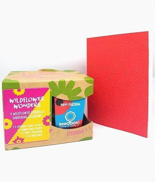 set 4 seedbom con carta piantabile auguri