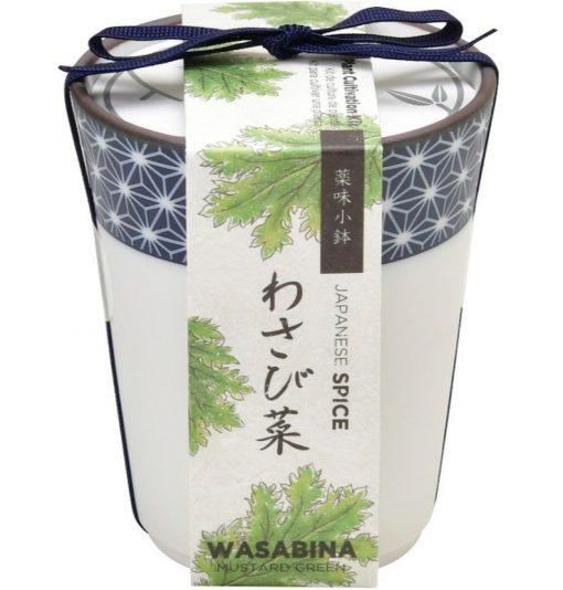 Wasabina