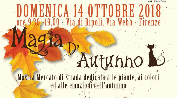 Magia d'autunno 2018 firenze