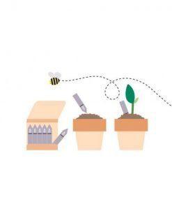 Matchstick Garden - Fiammifheri che germogliano