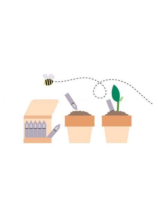 Matchstick Garden - Fiammiferi che germogliano
