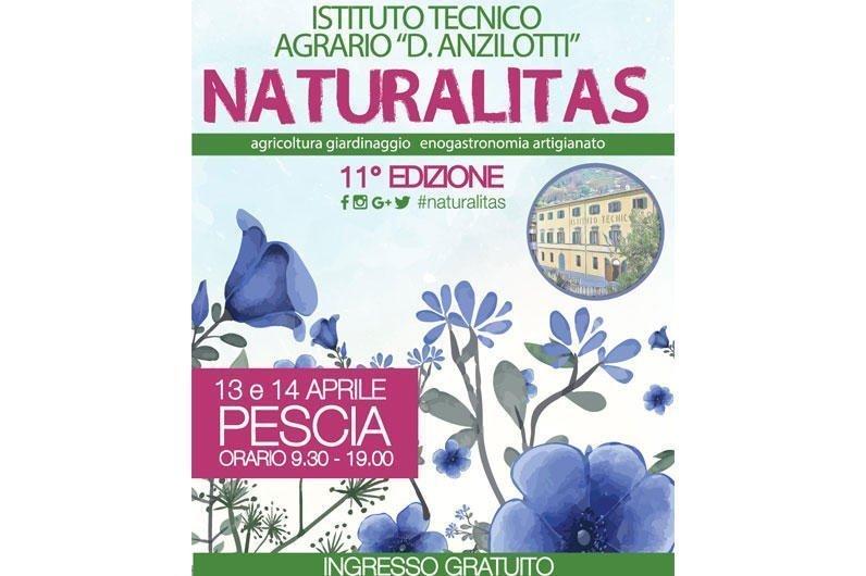 Naturalitas 2019