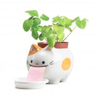 Peropon Cat XL