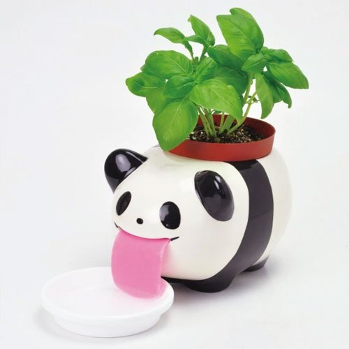 Panda Peropon XL